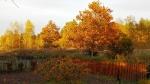 Nasza Jesień_12