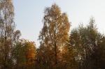 Nasza Jesień_1