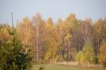 Nasza Jesień_6