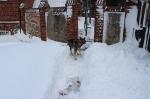 Zima 2013_14