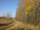 Jesień w Rokitach_5