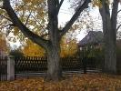 Jesień w Rokitach_6