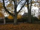 Jesień w Rokitach_7