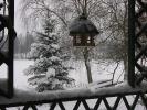 Zimowe widoki_10