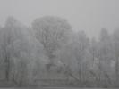 Zimowe widoki_19