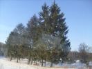 Zimowe widoki_20